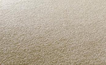 Csoportszobai szőnyeg